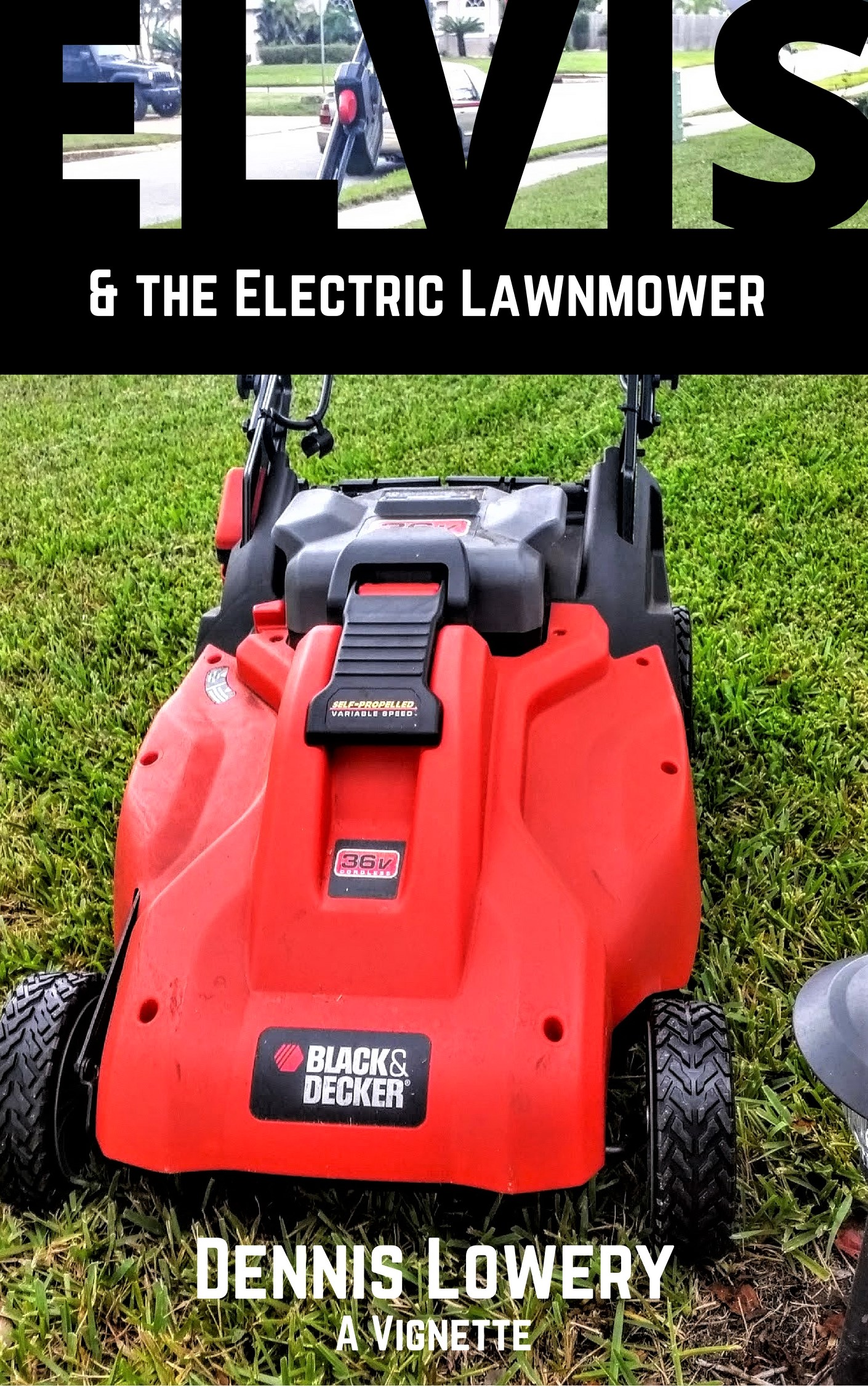 Elvis and the Electric Lawnmower